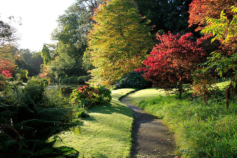 Autumn at Mount Usher