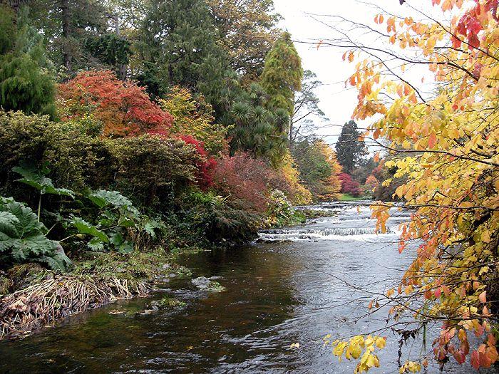Autumn at Mount Usher
