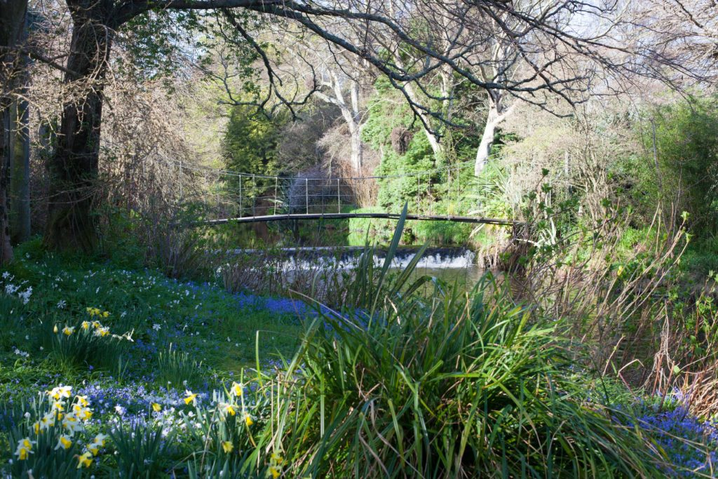 Mount Usher Gardens_Photography Courses