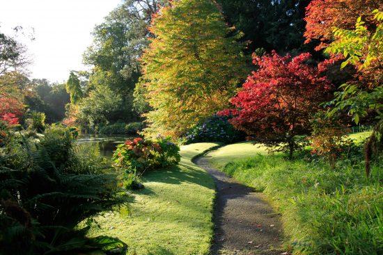 Heritage Week – free guided tour @ Mount Usher Gardens